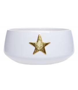 Misa ze złotą gwiazdką
